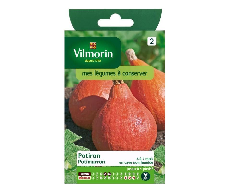 POTIRON POTIMARRON VILMORIN