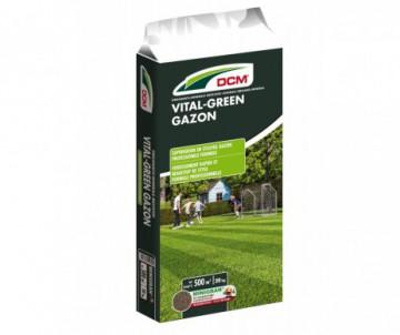 ENGRAIS GAZON VITAL GREEN 20 KG