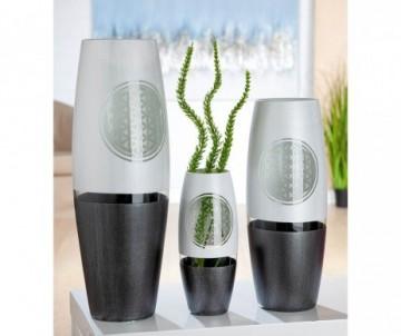 LAVANDE VRAIE X6 PLANTS
