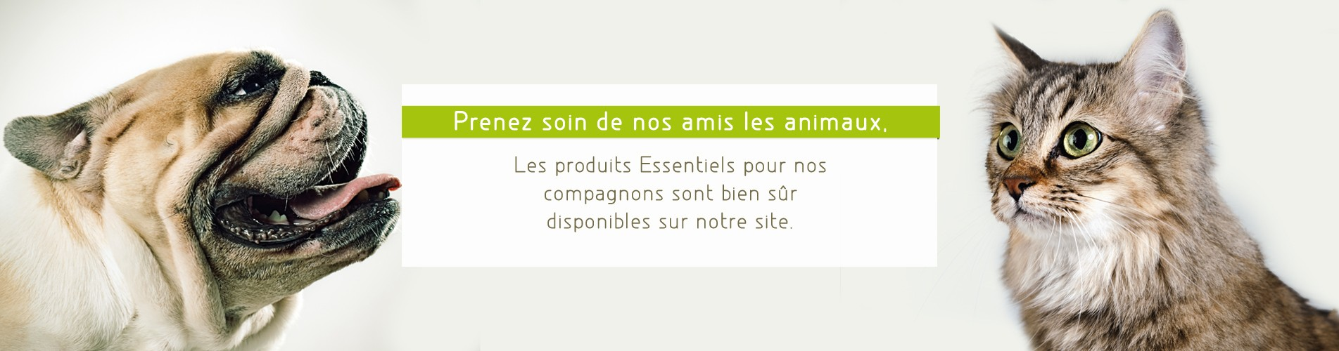 nos_amis_les_animaux