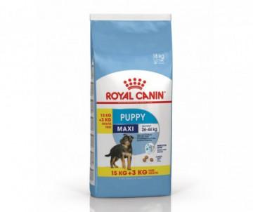 CROQUETTES MAXI JUNIOR 15+3KG ROYAL CANIN