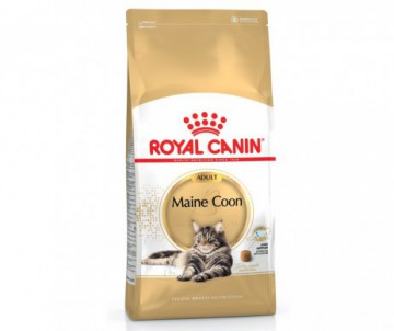 CROQUETTES MAINE COON ADULT 4KG ROYAL CANIN