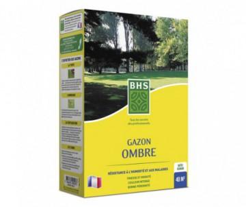 GAZON OMBRE 1KG